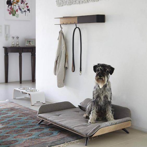 Место для собаки