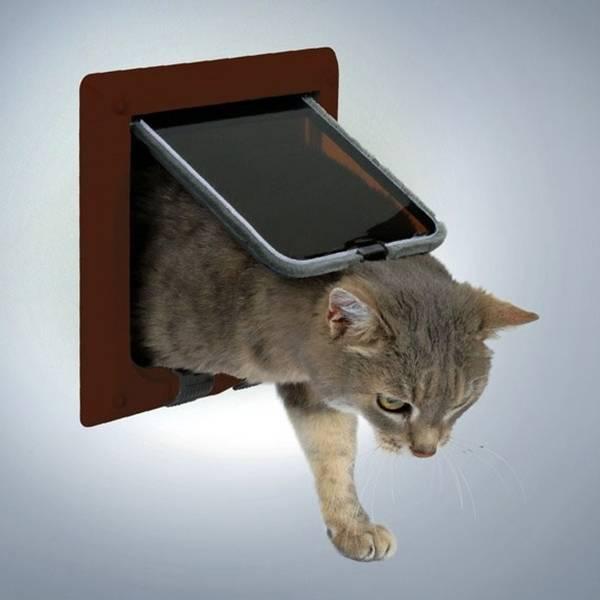 Вход для кота