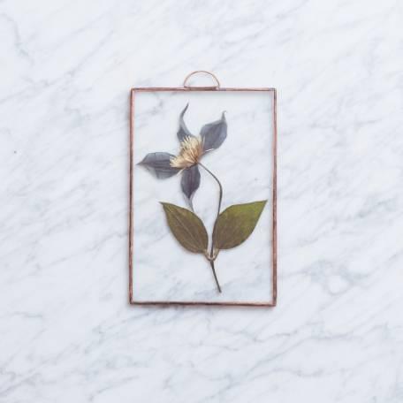 Ботаническая картина