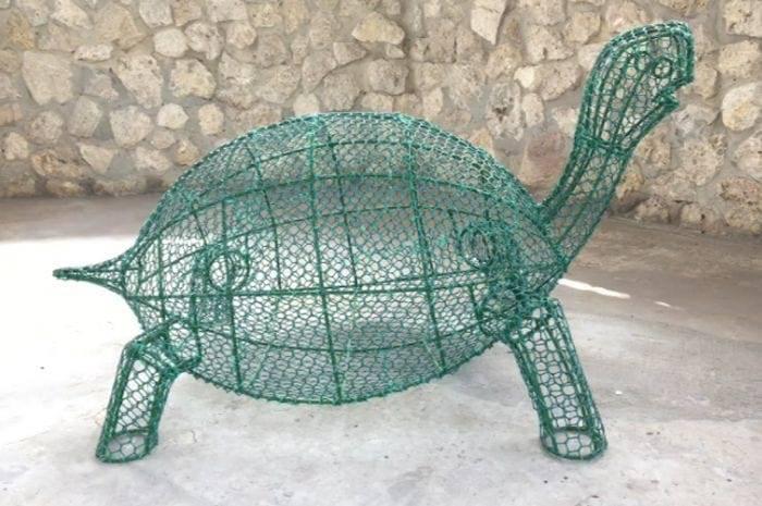 Каркас черепахи